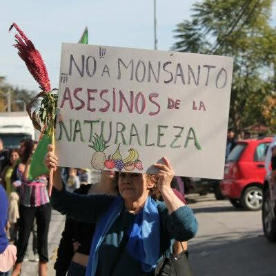Diseño sin título 4 - Monsanto en el mundo: ¿Qué es y por qué deberíamos preocuparnos?