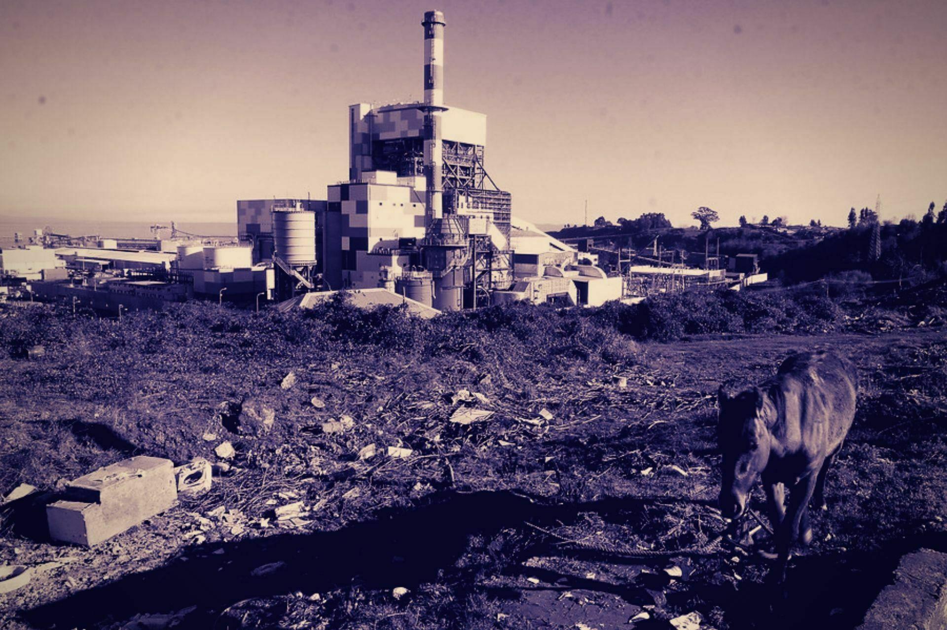 Photo of Comisión de salud verificará contaminación de asbesto en Coronel