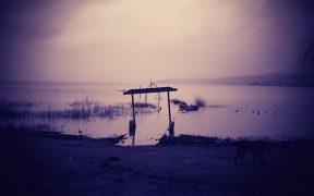 Contaminación en el Lago Villarica