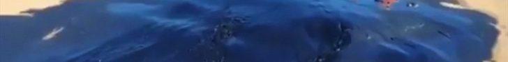 Culpables de derrame en Atacama / La denuncia apunta a Compañía de Aceros del Pacífico (CAP)