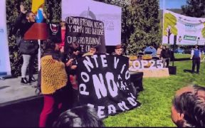 Organizaciones responden al lanzamiento de la COP25