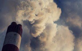 Emisiones de CO2 - Tomate Rojo