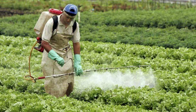 Photo of En Chile usan plaguicidas que están prohibidos en el mundo desde hace 20 años