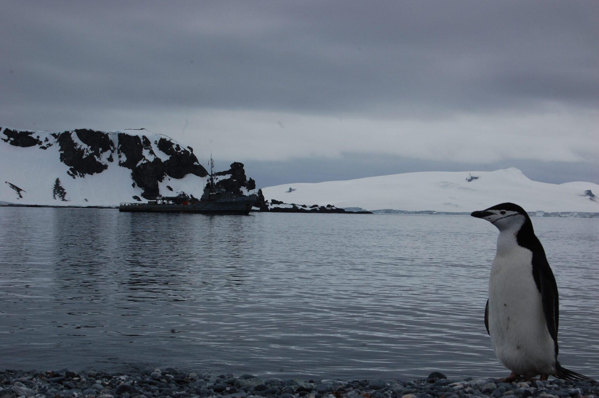 Photo of Agujero en la capa de ozono en Antártica influye en lluvias del hemisferio sur