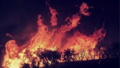Photo of Temporada de incendios forestales en California es calificada como la peor desde la llegada de la era moderna