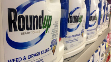 Roundup (Imagen de Mike Mozart)