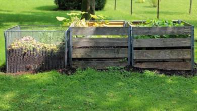 Photo of Cómo hacer compost casero: guía completa