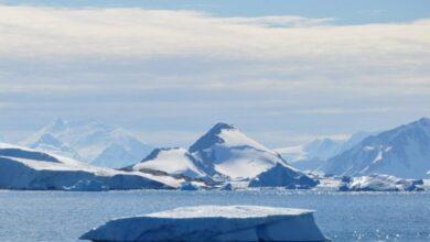 Photo of El nivel del mar sube cuando la Antártida se derrite