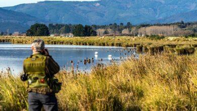 Photo of Humedales Arauco-Desembocadura y Aguada la Chimba son declarados como santuarios de la naturaleza
