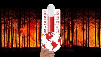 11 mil científicos contra la Emergencia Climática