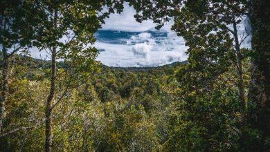 Costero de Totoral y Parque Katalapi
