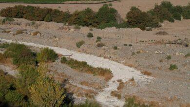Escasez hídrica en Petorca