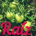 Photo of Raíz Eco Revista