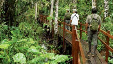 áreas silvestres protegidas abiertas