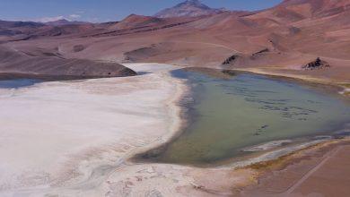 El documental «Maricunga: ecosistema amenazado por la minería del litio» es una pieza audiovisual que retrata los impactos socioambientales negativos de la minería del oro y el litio en Copiapó.