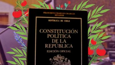 Agroindustria en la Convención Constitucional